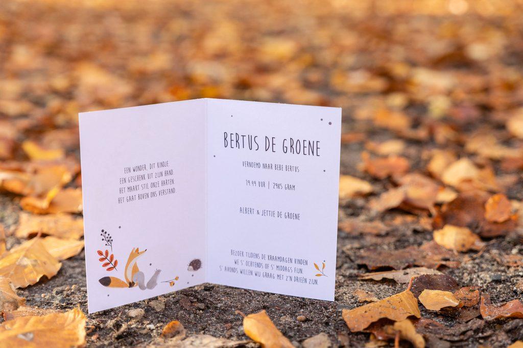 Herfst geboortekaartje uniek ontwerp